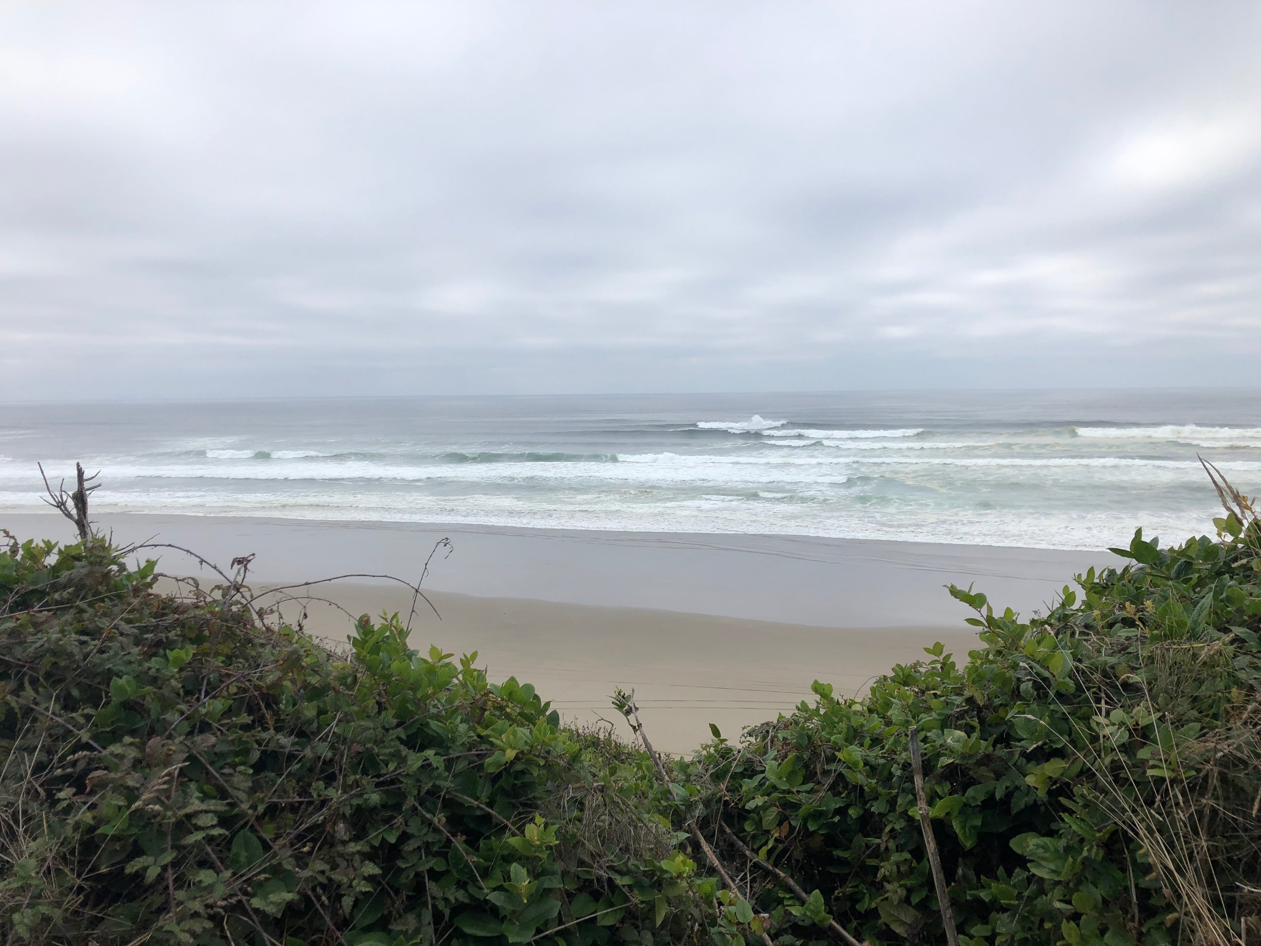 A pretty view along the drive to Pacific City