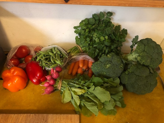 A sample of veggies from the market - this, plus seven tamales was about $4.00 US!