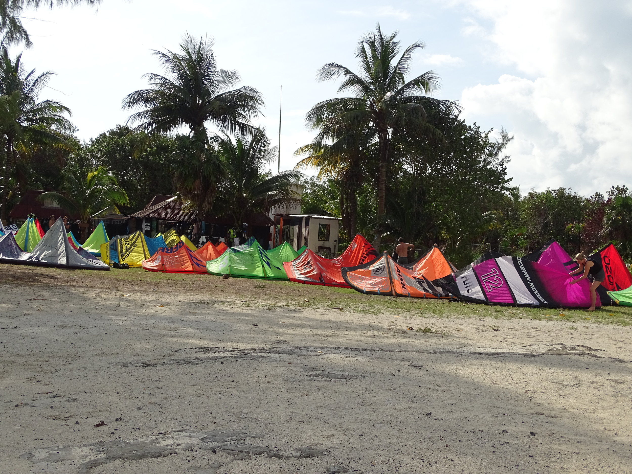 Kites drying after the storm