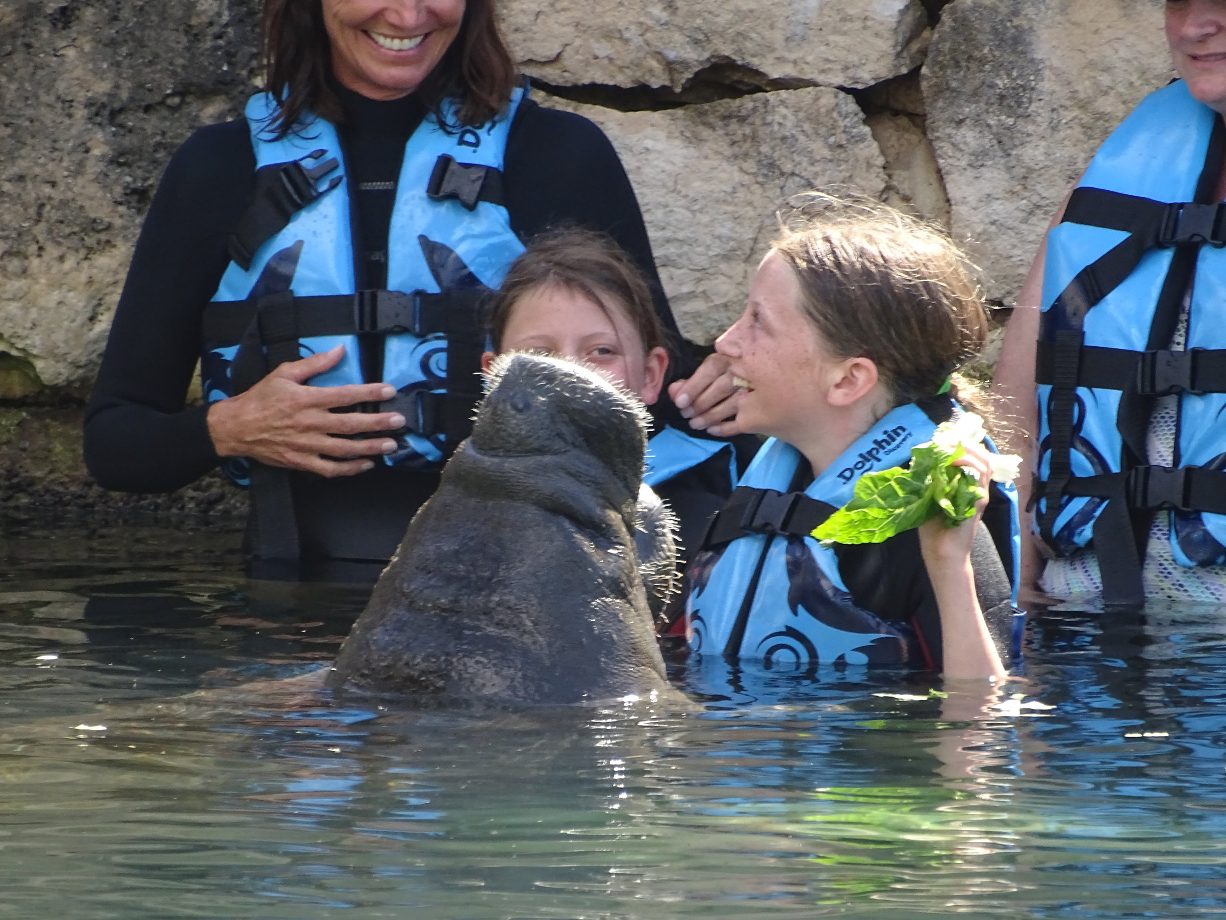The girls with a manatee - Ellie is holding the lettuce!