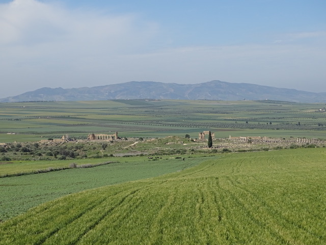 The Roman ruins of Volubilis