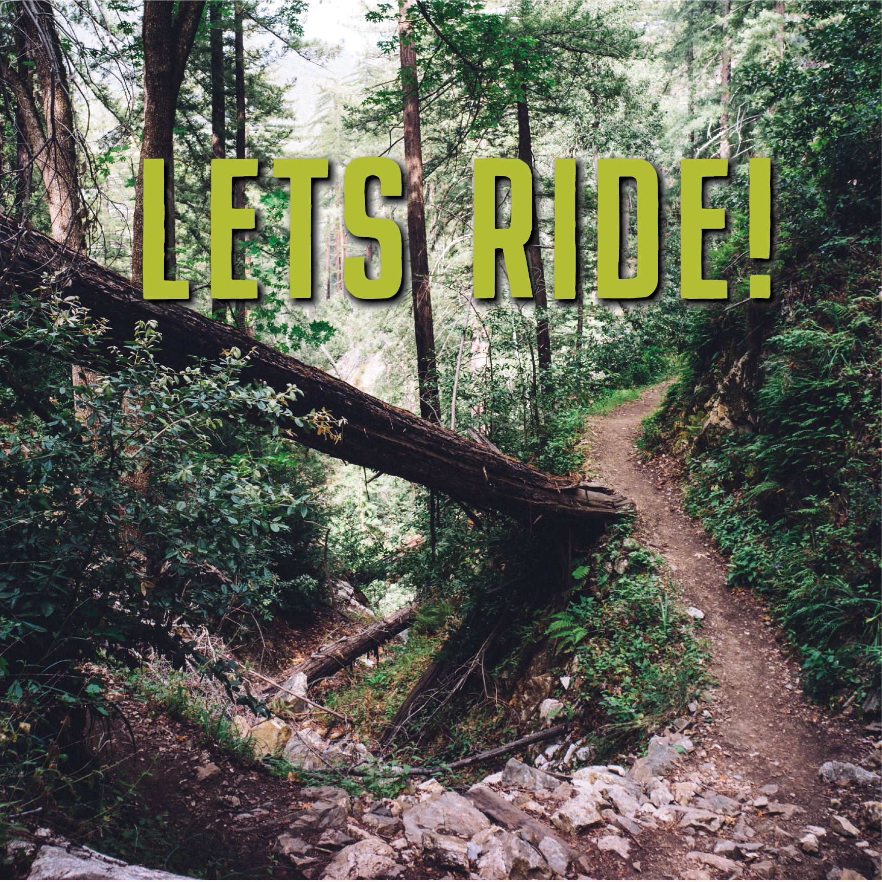 lets ride-01.png
