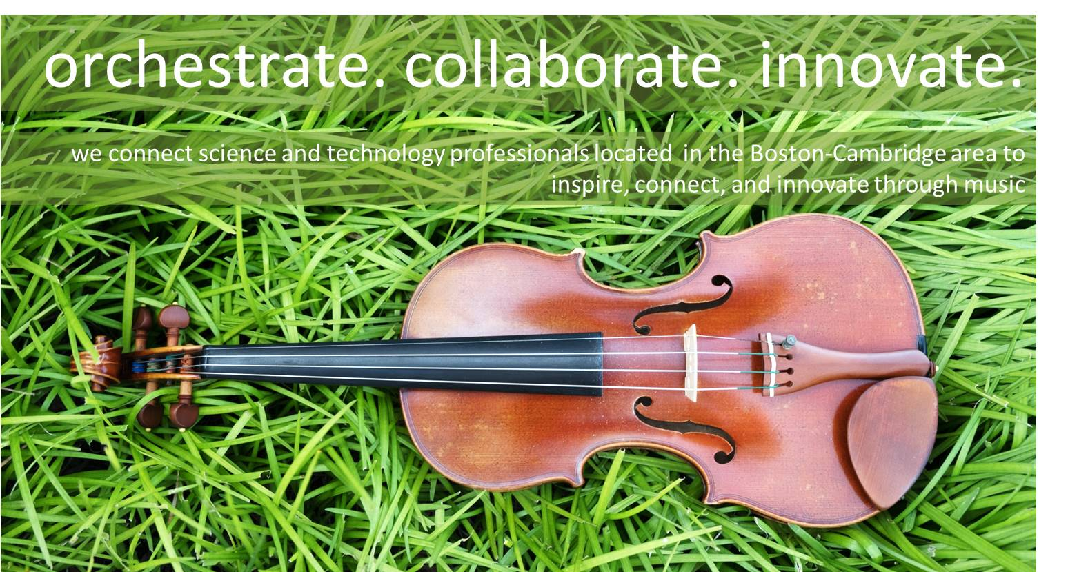 violin on grass tag line inverse.jpg