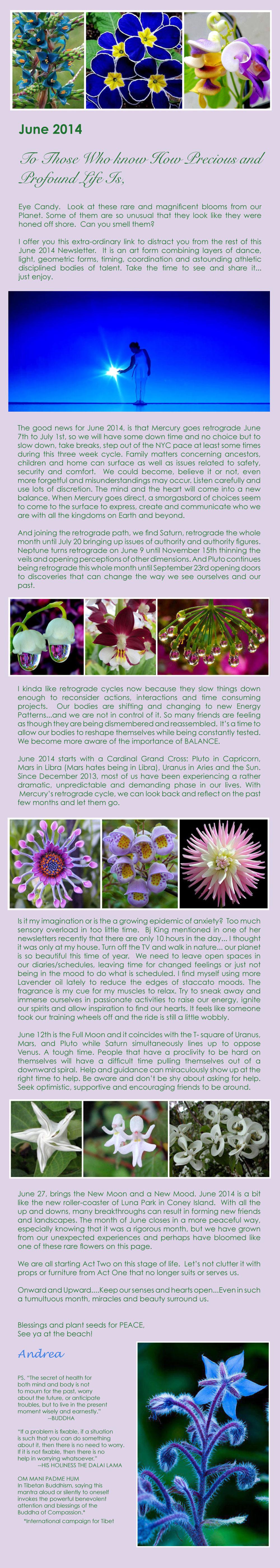 June-Newsletter-2014.jpg