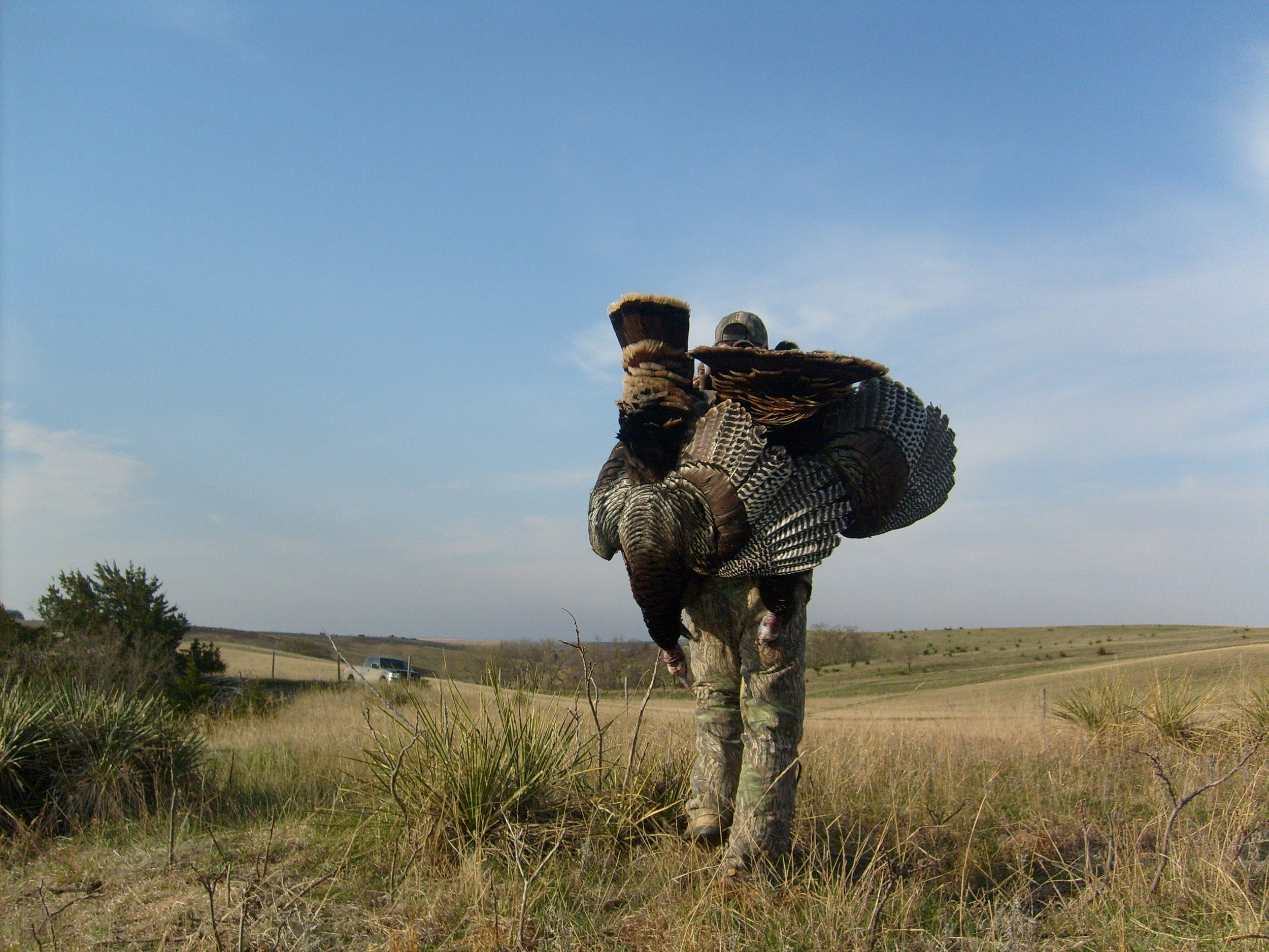 10 hunter limit per year - book early