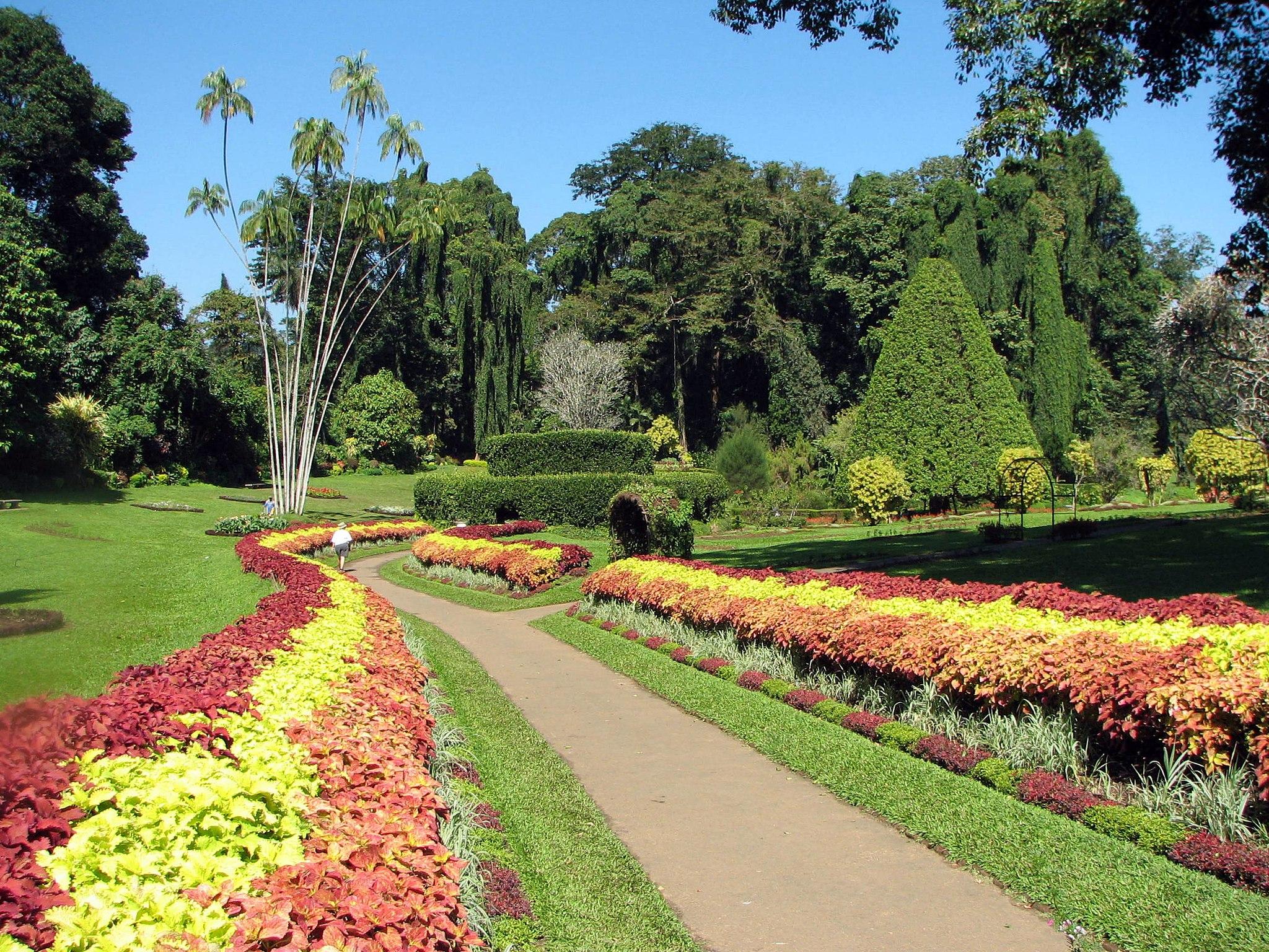 2048px-Botanical_Garden_of_Peradeniya_03.jpg