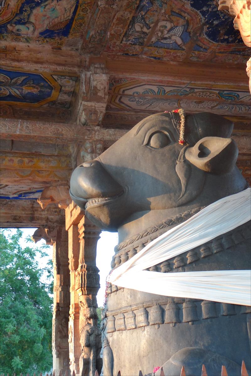 Jean-Pierre Dalbéra Brihadishwara temple - il toro Nandi, la cavalcatura di Shiva.jpg