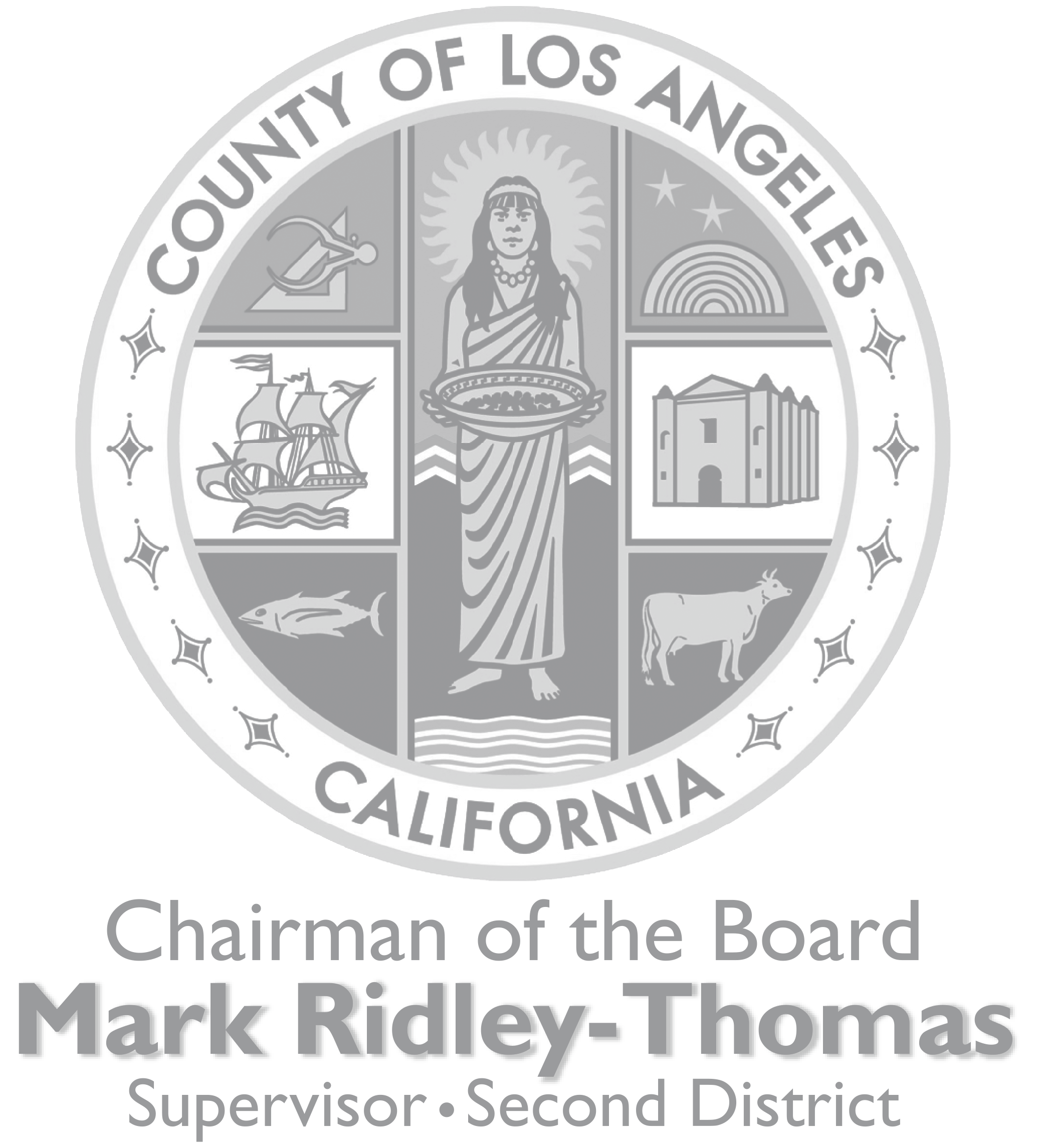 MRT-Chairman-LA County-Cool-7.png