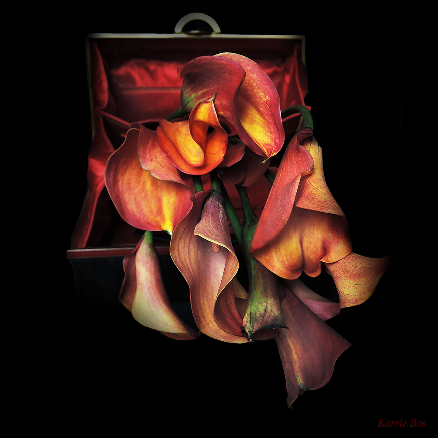 DSCN4635a for tulip purse 12 28 1 by 1 gallery.jpg