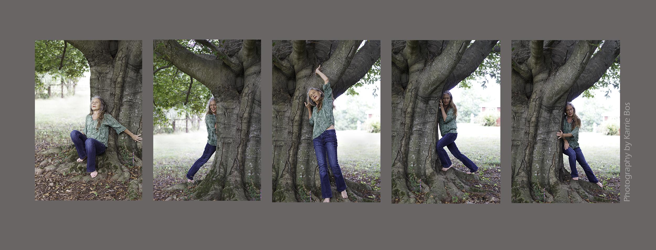 montage b.jpg