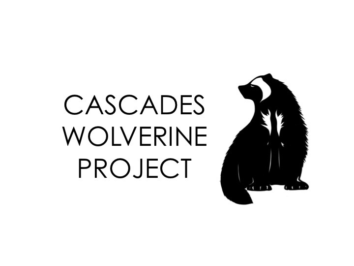 - A grassroots effort to boost winter wolverine monitoring in the North Cascades, capture engaging images of this elusive mountain carnivore, and leverage the skills of winter backcountry recreationists as wildlife observers and alpine stewards.