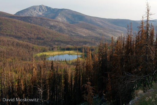 Rogers Lake and Tiffany Peak, site of the Tripod Fire.Okanogan Highlands, north-central Washington.