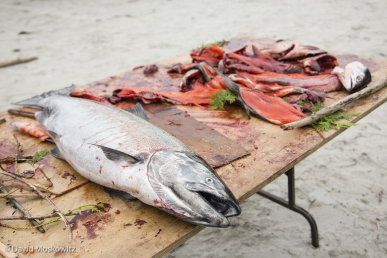 Meals often included traditional foods such as salmon and many other foods from the sea.