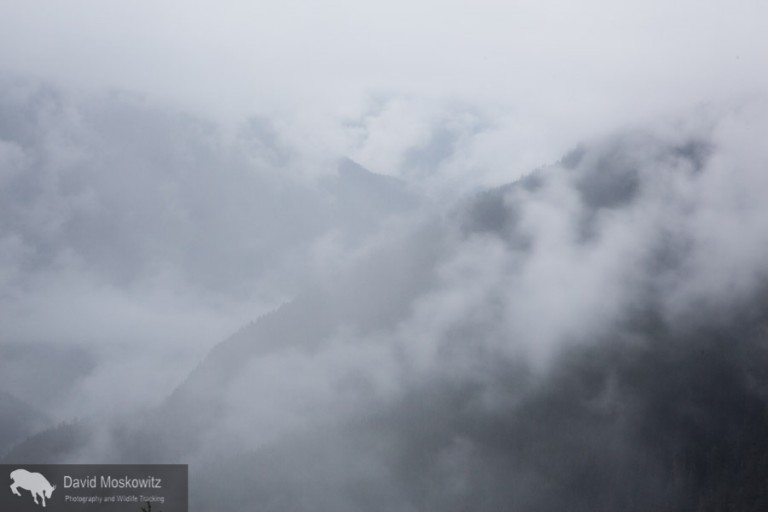 Descending into the clouds from the glacial cirque back into the forests of the North Cascades.