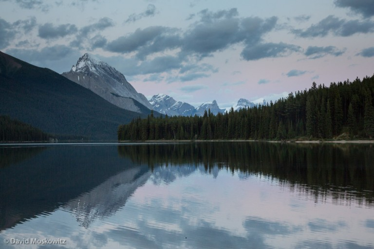Maligne Lake in Jasper National Park. Mountain caribou populations are being closely monitored in even large wilderness landscapes such as in the Canadian Rockies.