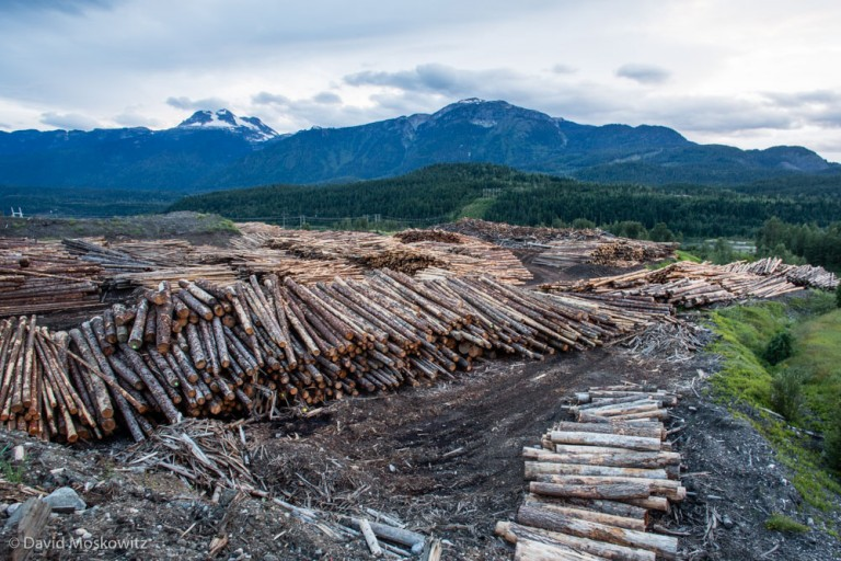 Lumber yard in Revelstoke, British Columbia. The logging industry is a primary employer in much of the region.