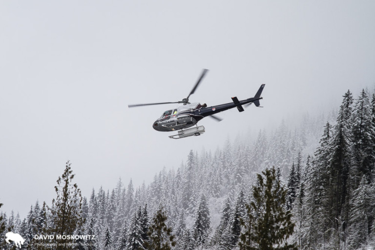 A number of companies offer heli-skiing from Revelstoke, and the sound of helicopters flying is part of the winter ambiance in town and the mountains around it.