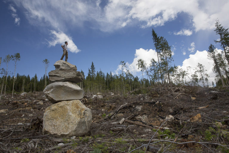 David Moskowitz inspects a recent clearcut in the Upper Seymour River on the west slope of the Monashee Mountains. Photo by Marcus Reynerson.