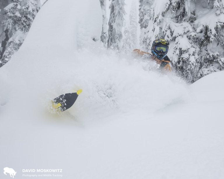 "Ryan ""Dunny"" Dunford kicked up some powder for us on his mountain sled on Boulder Mountain."