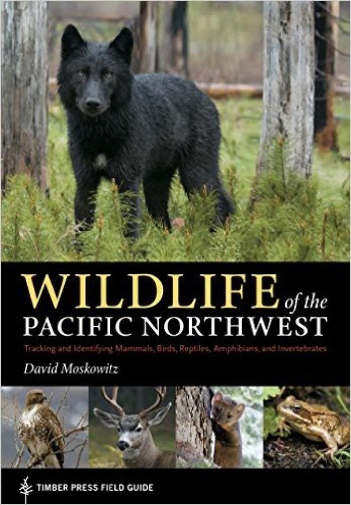 Wildlife-of-Pacific-Northwest.jpg
