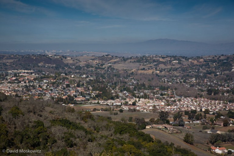 On the eastern edge of the Santa Cruz mountains, residential areas intermix with parklands and forested mountains creating a fragmented landscape that mountain lions travel through carefully.