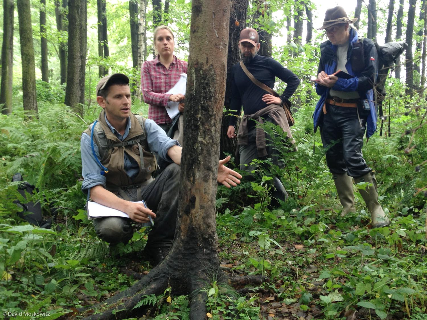 Casey McFarland discusses the sign left by a wild boar rubbing on the base of a tree in the Saxony region of Germany during a Track and Sign Certification event.