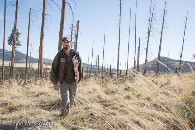 Rayne Zhaughsome on the trail of a herd of elk during a trailing workshop held north of Flagstaff Arizona.