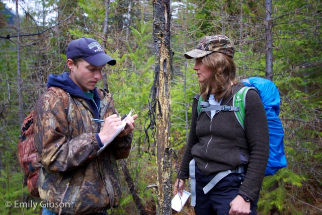Mike Mayernik taking an answer from participant Andrea Stephens about the elk antler rub on the tree between them.