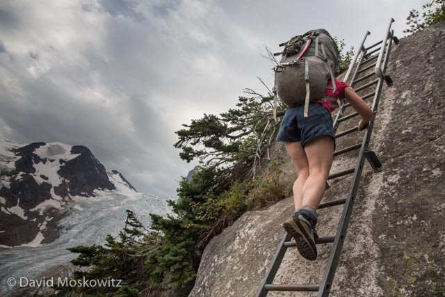 The trail up to the alpine includes one ladder and several sections with bolted chains to assist with a safe ascent along the trail.