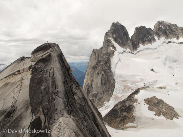 Unidentified climber on the false summit of Pigeon Spire. Howser Spires and the upper Vowell Glacier beyond.