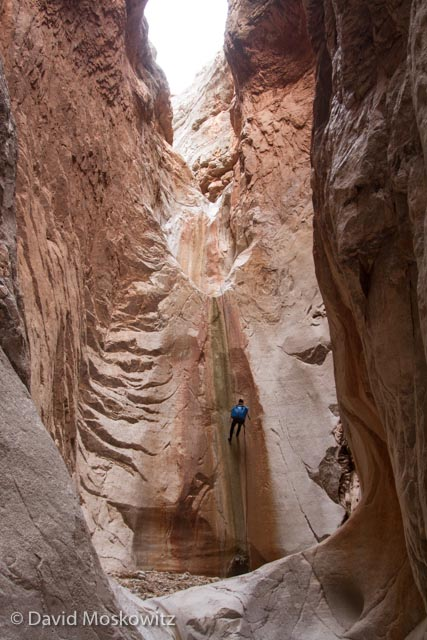 Canyoneer Lesley McClurg on rappell in Cove Canyon, Arizona.