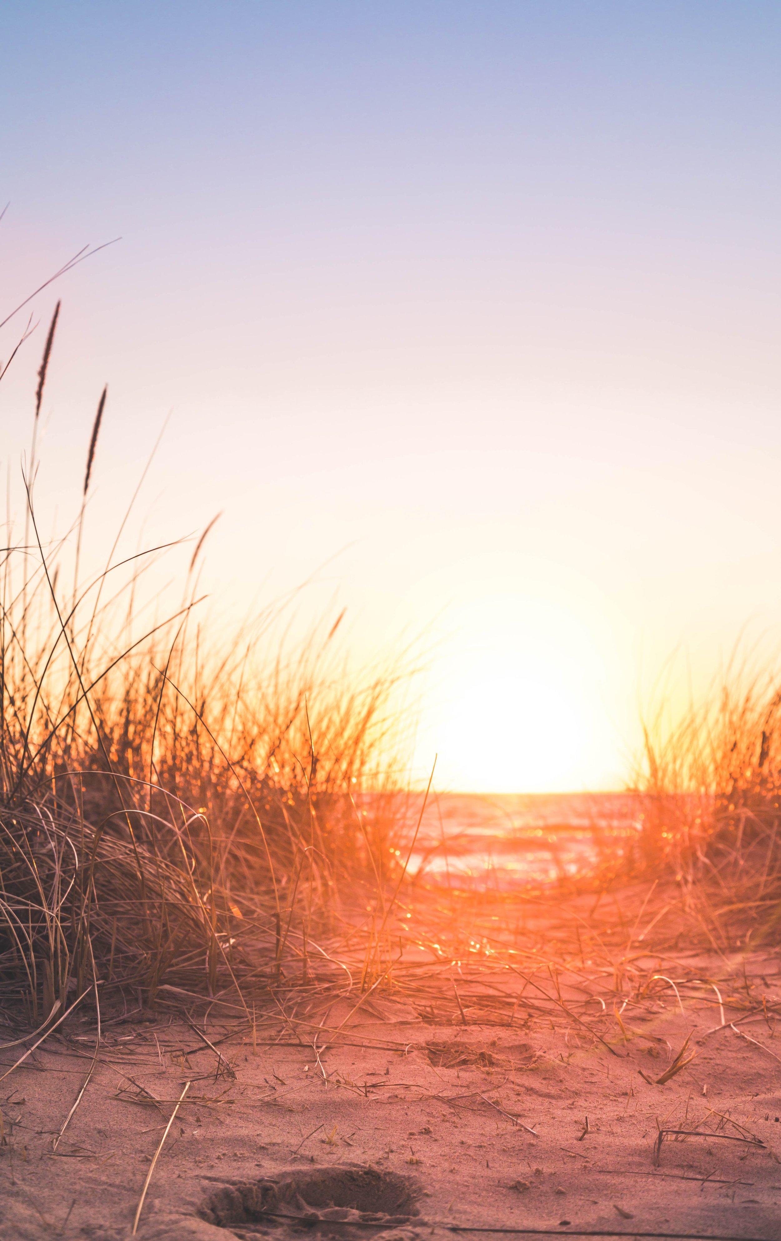 backlit-beach-dawn-1032651.jpg