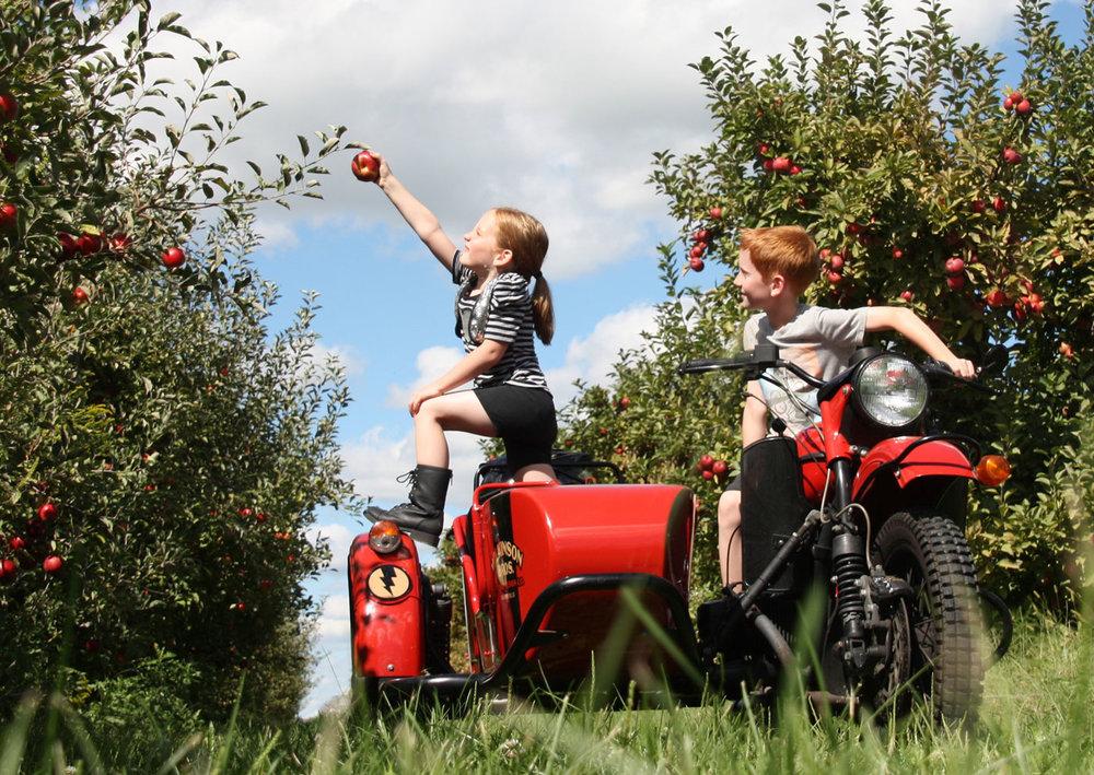 Ural+Sidecar+Motorcycle+at+the+Orchard.jpeg