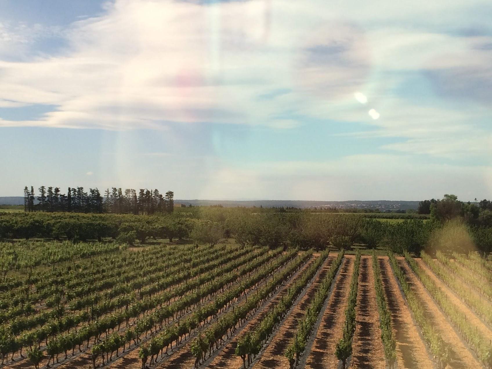 barcelona train 8.jpg
