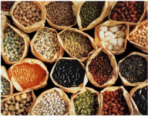 Beans in Bags.jpg
