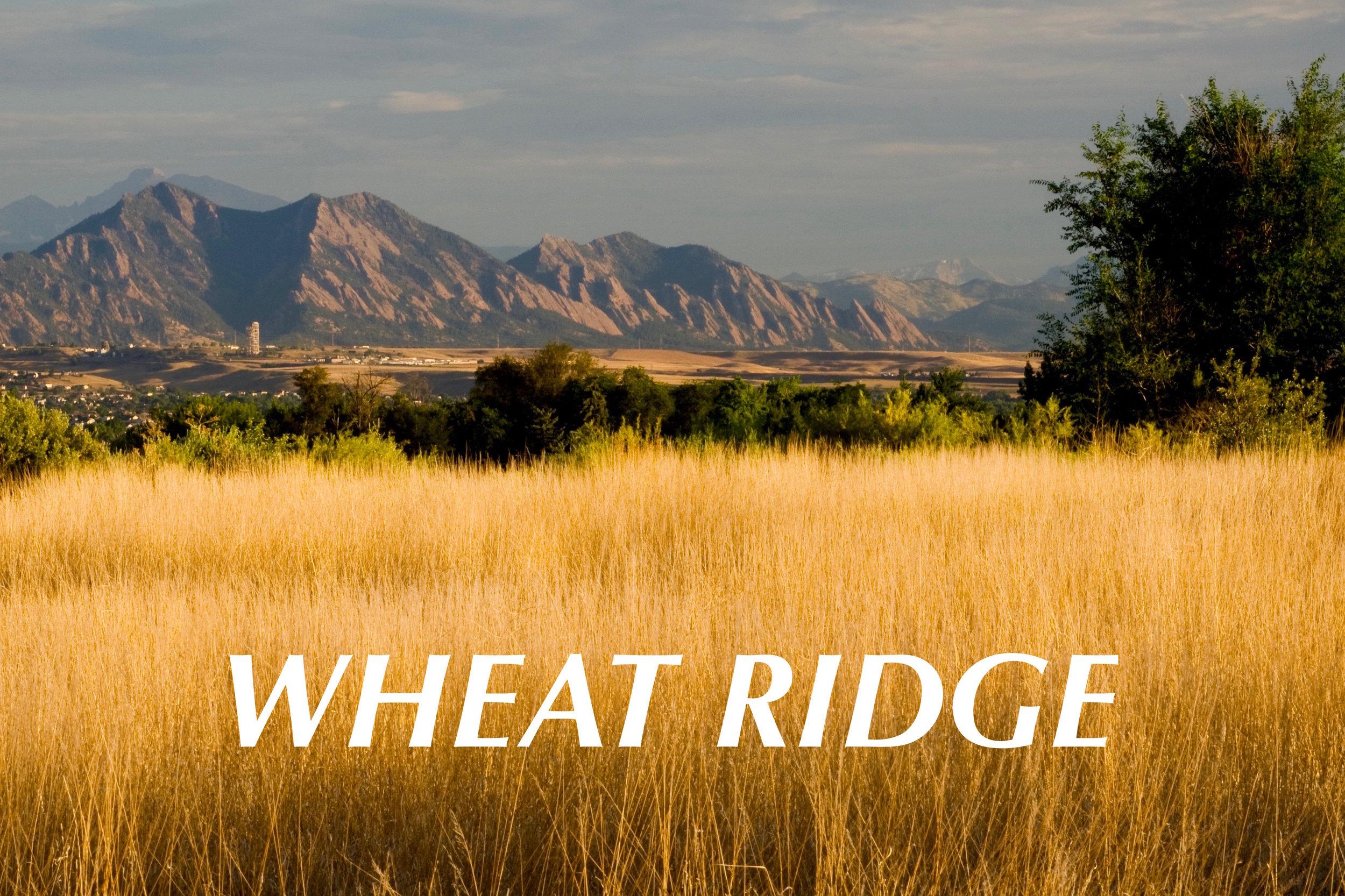 Wheat Ridge Duplex - Just Listed