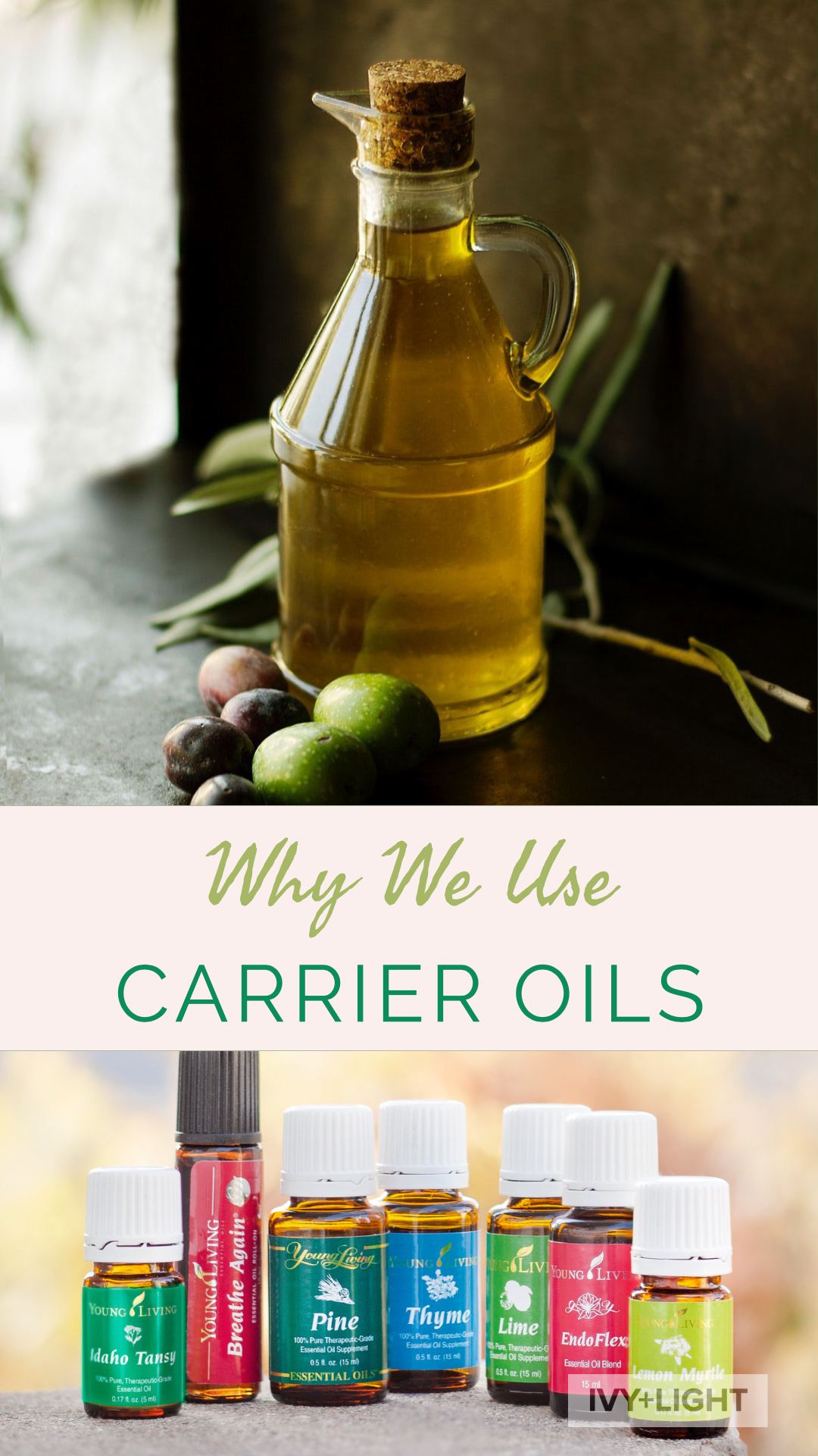 Carrier oils.png