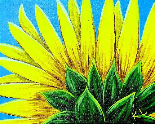 Face The Sun (Kelsey Lytle)-opt.jpg