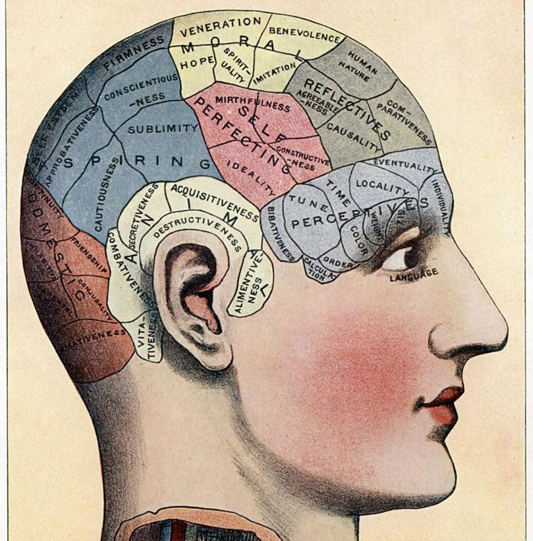 Memory, the illusive scrapbook of consciousness. -