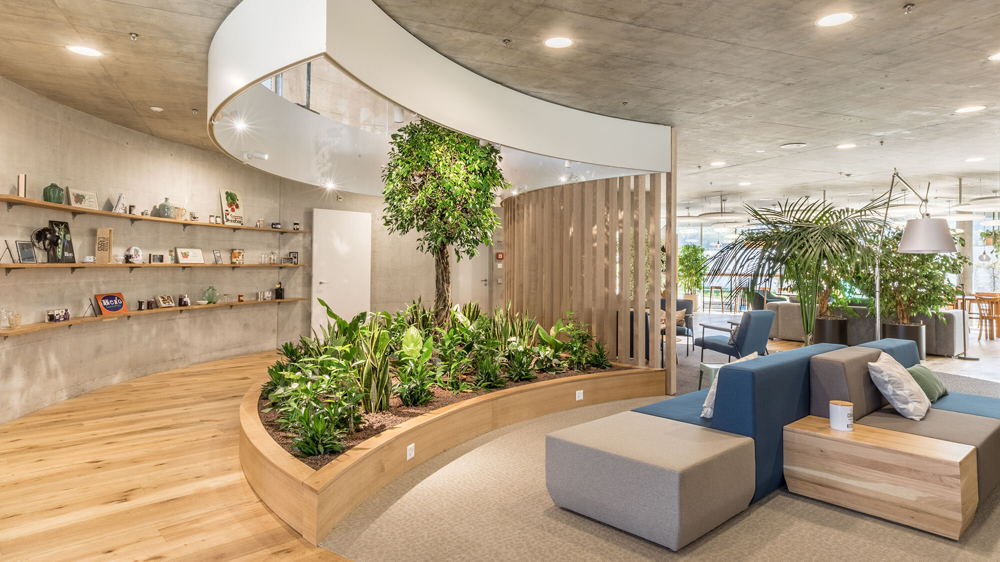 Biophilic design - interiors & buildings - principles ...