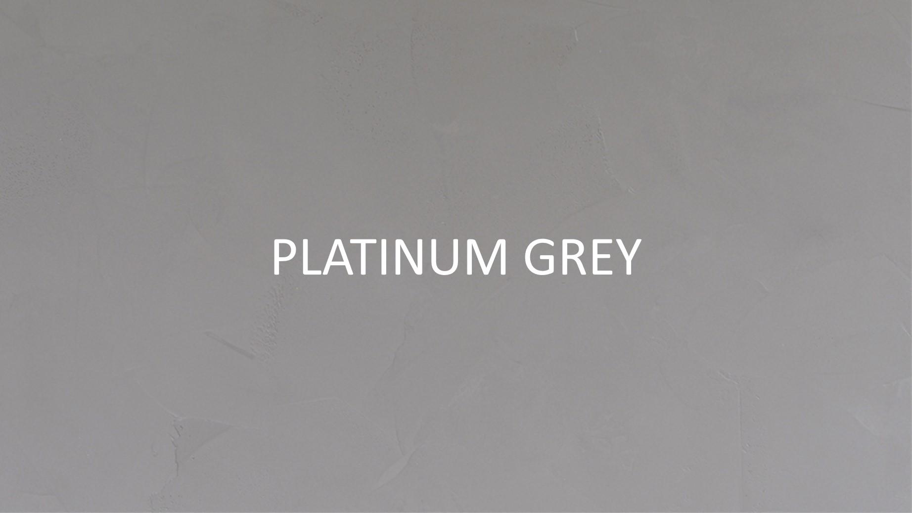 3054 Platinum Grey2.jpg