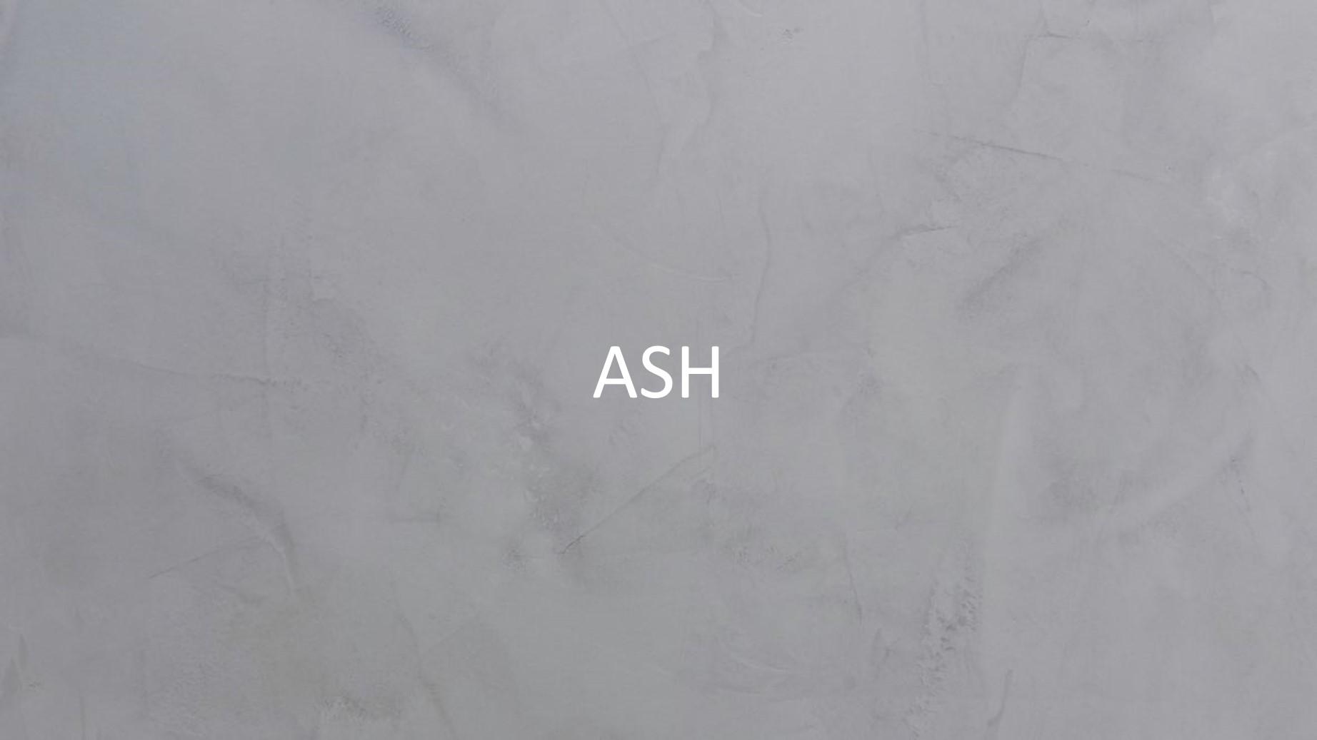 30511 Ash2.jpg