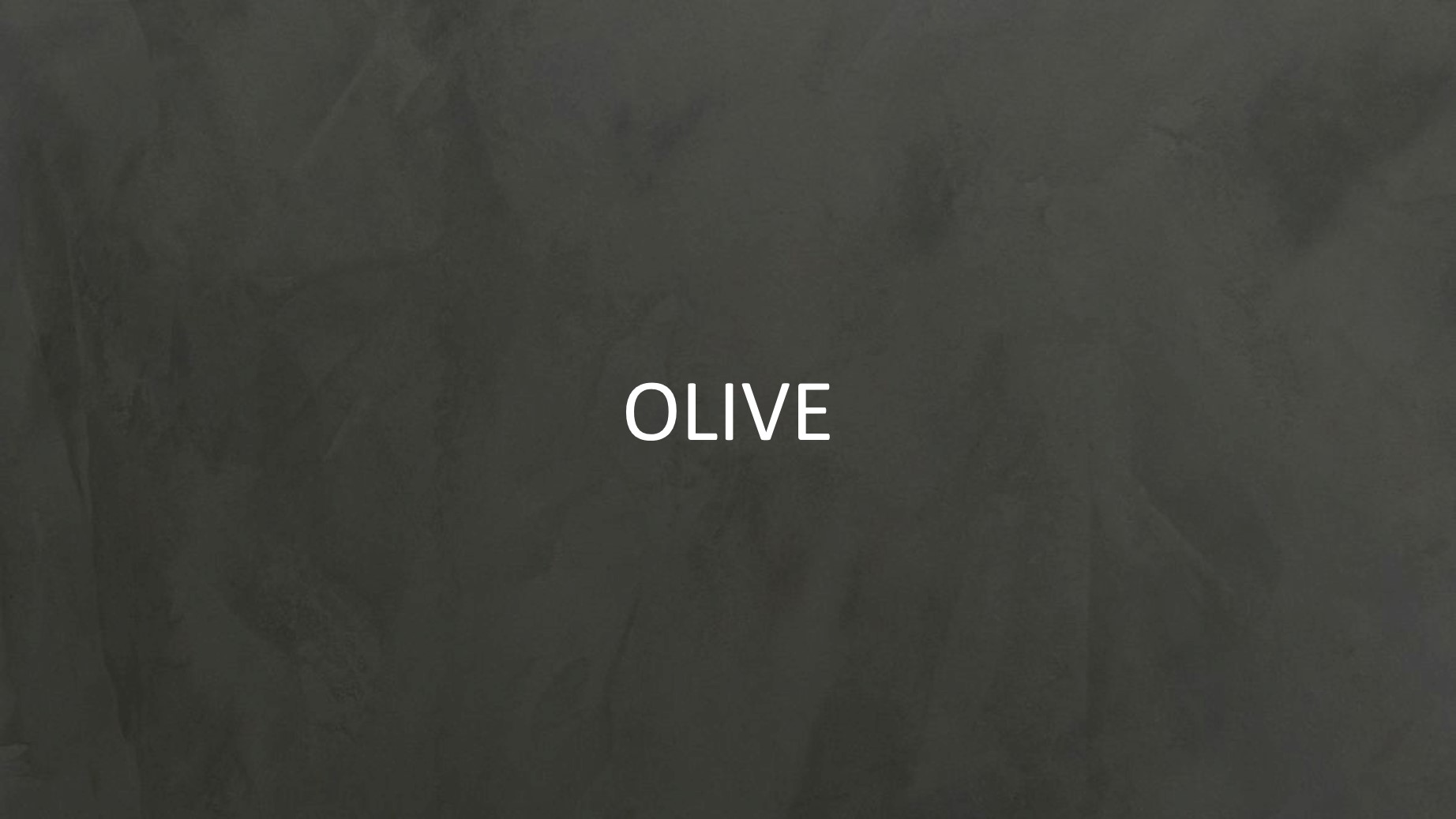 30514 Olive2.jpg