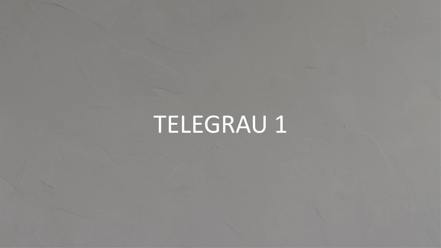 3055 Telegrau 1_2.jpg
