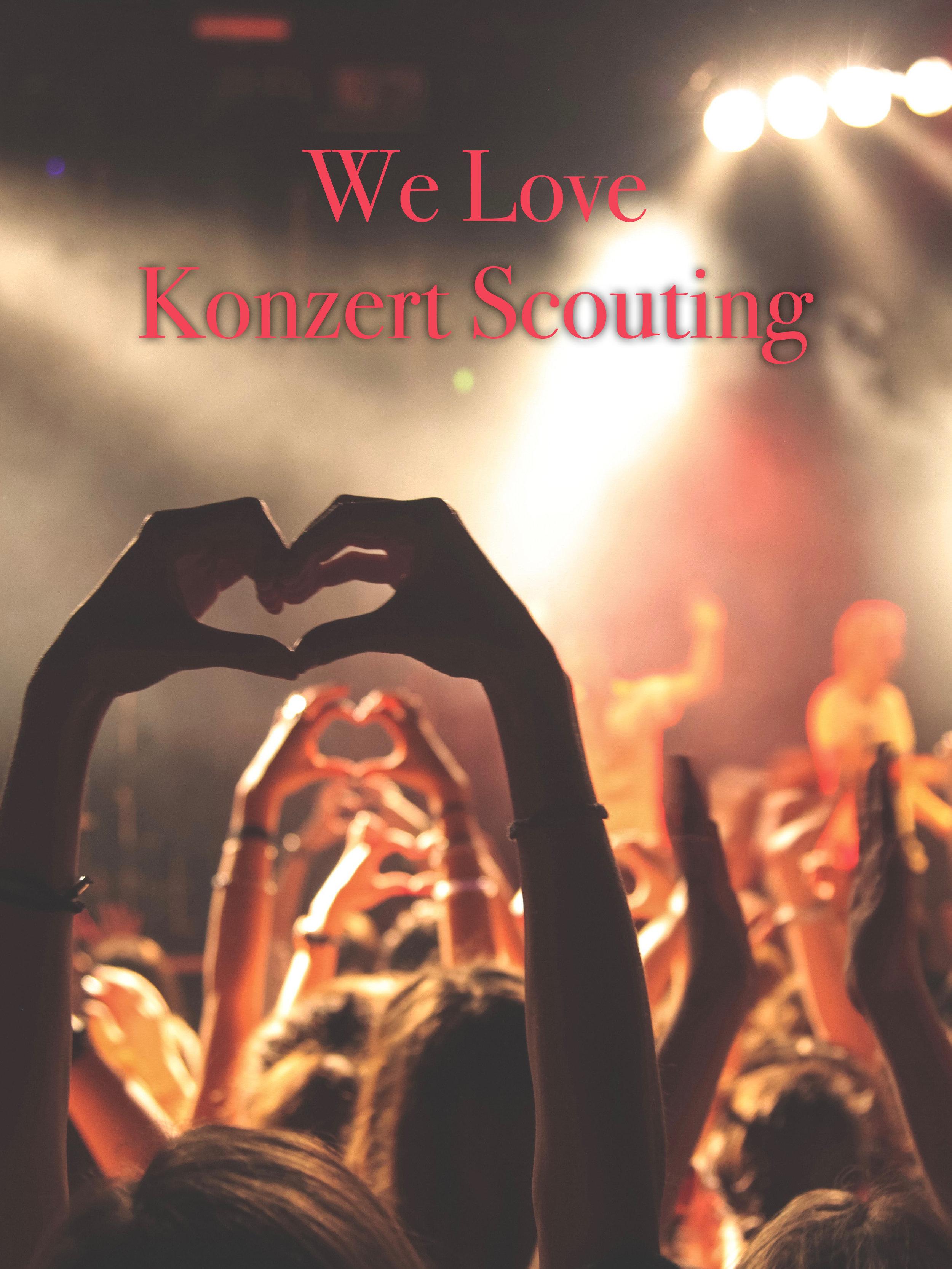 Scout7 Kopie Kopie.jpg
