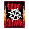 SR Burn It Down.jpg