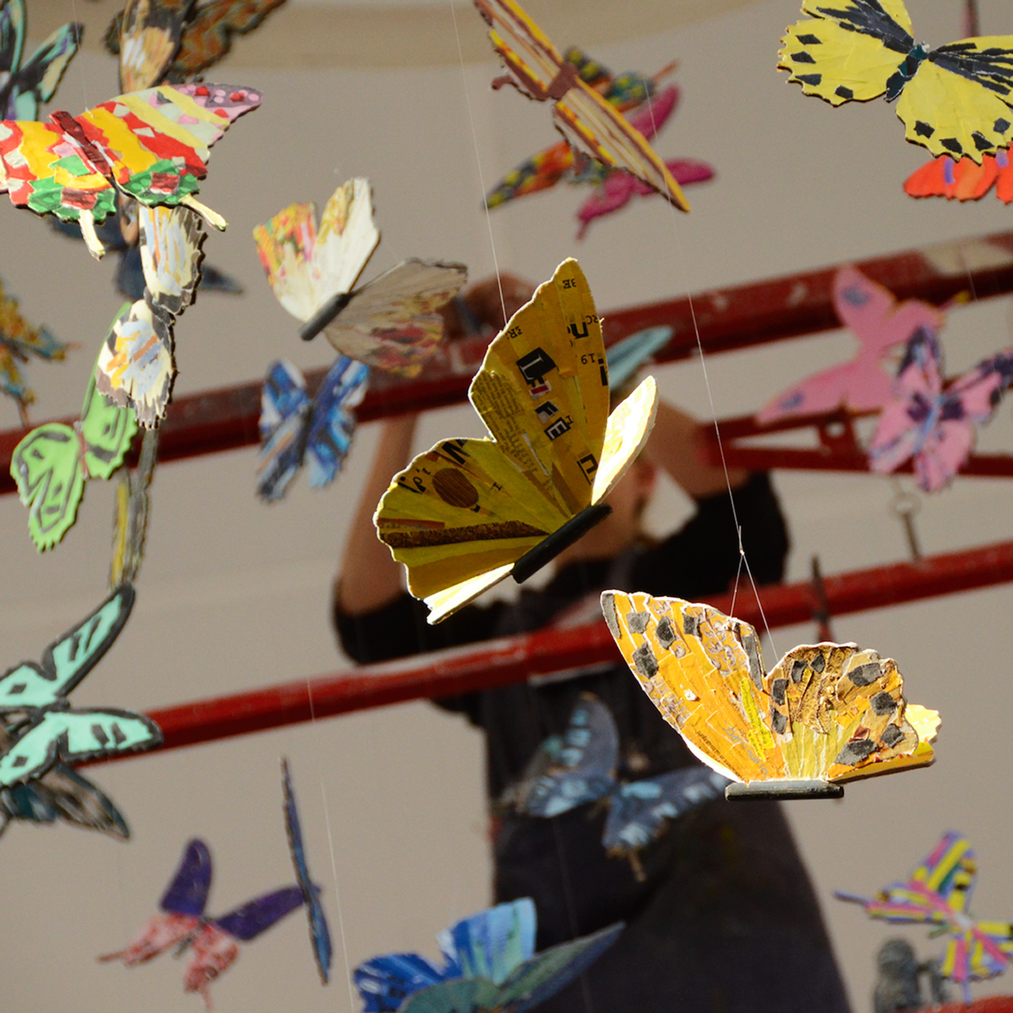 installing colourful butterfly display