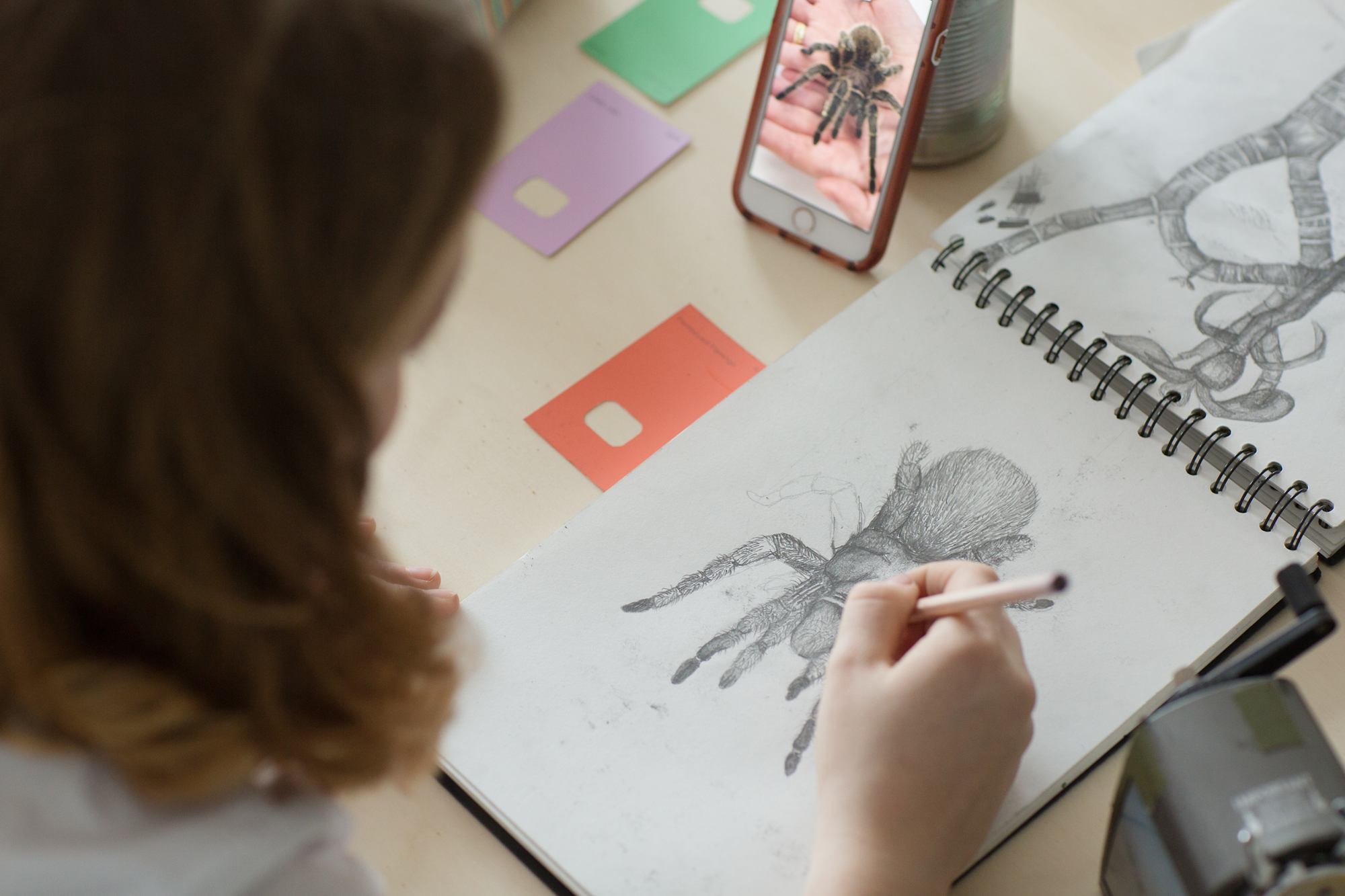 spider drawing pencil teens lesson