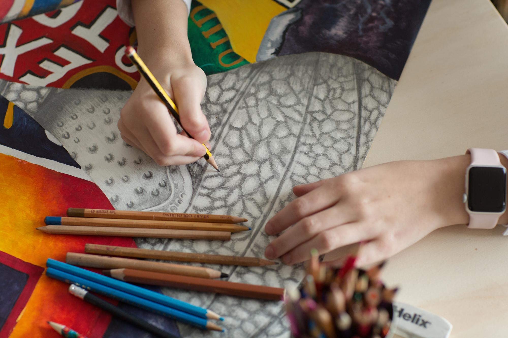 pencil study tone art lesson
