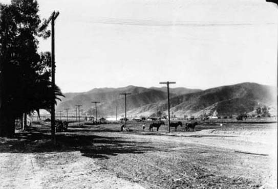 By 1890, the Anglo interests had virtually taken over all that remained of New Spain. Post Civil War immigration from the East had established new agricultural communities throughout Los Angeles and the San Fernando Valley. The area adjacent to Laurel Canyon was almost exclusively farm and orchard land. The photo above shows Sunset Boulevard near Fairfax – just a dirt track prior to 1900.
